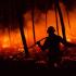 Servicio GRATUITO para los afectados del incendio en Galicia y Asturias