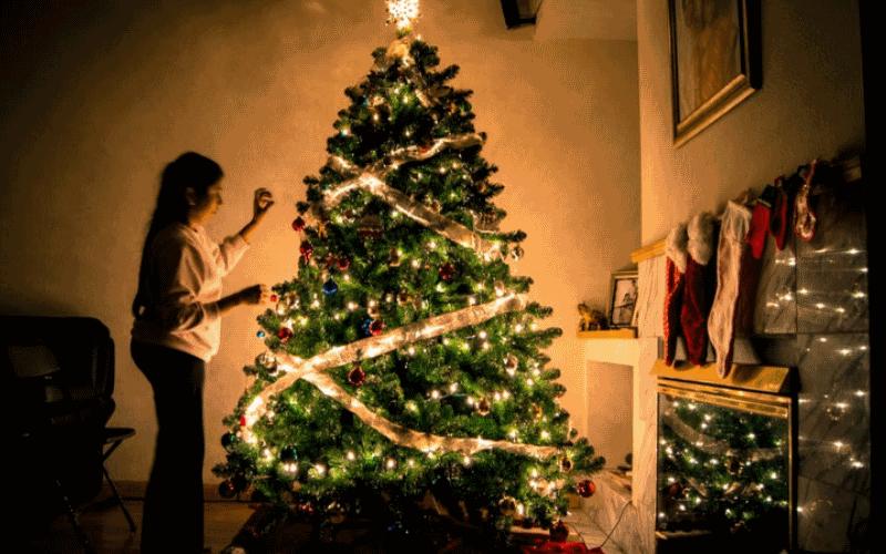 seguro navidad